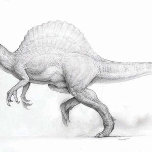 Parque Jurasico Iii Jurassic Park Wiki Fandom Gorra de béisbol ingen company jurassic park. jurassic park wiki fandom