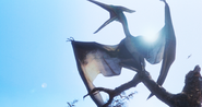PteranoJPTLWPteranodon