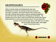 Dilophosaur encyclopedia