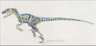 Raptormark1.png