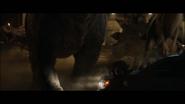 Carnotaurus, Gallimimus and Apatosaurus
