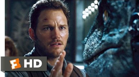 Jurassic World (8 10) Movie CLIP - Raptors vs