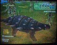 Ankylosaurus wandering