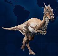 DracorexMain