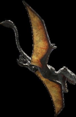 Dimorphodon dczs5y5-000bb445-8667-4bec-9e0a-ef2b4f3d7b81.png