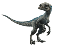 Fallen kingdom blue the velociraptor v5 by sonichedgehog2-dcb00lh
