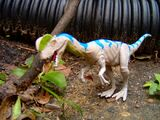Dilophosaurus/Toys