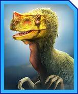 ProceratosaurusProfile