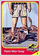 Robert muldoon collector card