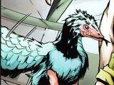 Archaeopteryx