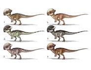 JW Camp Cretaceous Bumpy Pachycephalosaurus Concept Art