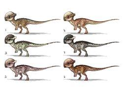JW Camp Cretaceous Bumpy Pachycephalosaurus Concept Art.jpg