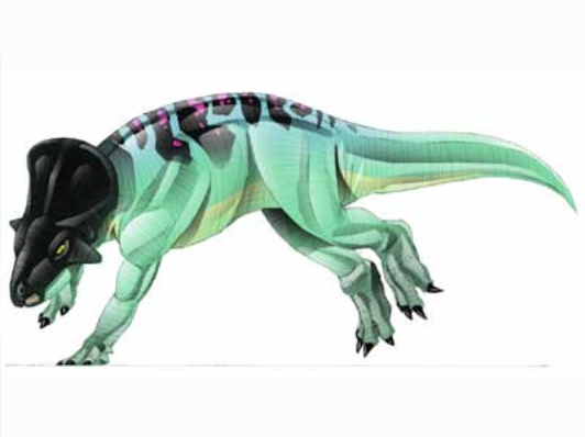 JPI Leptoceratops.png