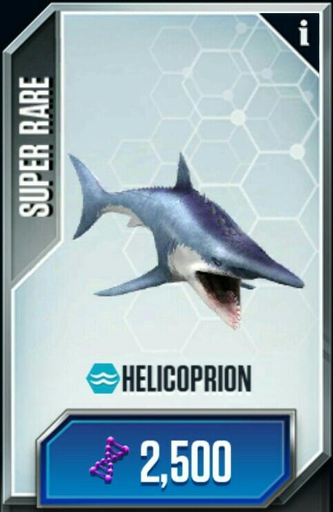 Helicoprion/JW: TG