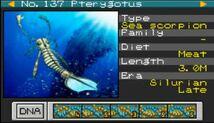 Pterygotus.JPG