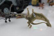 Dimorphodon FK Toy