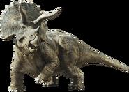 Jurassic world fallen kingdom triceratops by sonichedgehog2-dc9dwcu