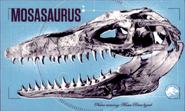 Мозазаврнаклейка5