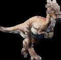 Dracothumb.png