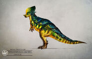 Jing-cheng-pachycephalosaurus