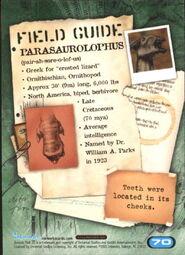 2001 Jurassic Park III 3-D 70 Parasaurolophus back