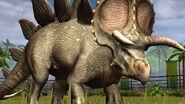 Baseformstegoceratops