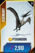 Pteranodon card