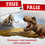 True or False Dinosaurs and mammals had coexisted