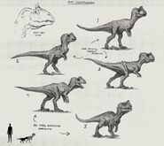 JW Camp Cretaceous Bumpy Baby Cryolophosaurus Sketches