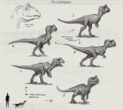 JW Camp Cretaceous Bumpy Baby Cryolophosaurus Sketches.jpg