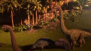 Darius watching the dinosaurs from the zip line