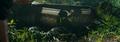 Compsognathus Jumpscare