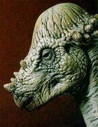 Pachycephalosaurus-animals.timduru.org