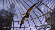 JWE Pteranodon Screenshot 1 copyright