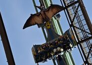 Flying Dinosaur Coaster Car