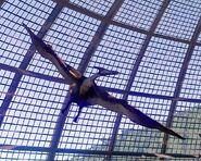 JWE Screenshot Aviary 01 (1)