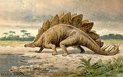 Stegosaurus real.jpg