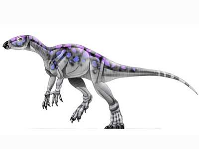 Bugenasaura