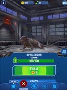 Ophiacodon alive