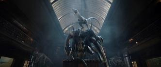 Combat Blue vs Indoraptor 6