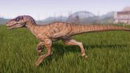 Raptor97F