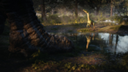 JWE2 Coelophysis encounters T-rex