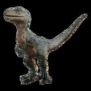 Raptor Dd6x1la-af2a61a7-f297-4229-b697-0868126dcc83