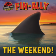 Fin-Ally the weekend!