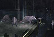 Parasaur5
