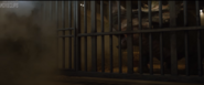 Sino in cage 3