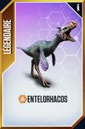 Entelorhacos (The Game)