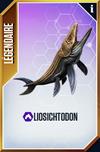Liosichthodon