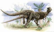 Pachycephalosaurus Csotonyi2