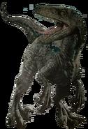Unused velociraptor render by kingrexy-dci8cb0